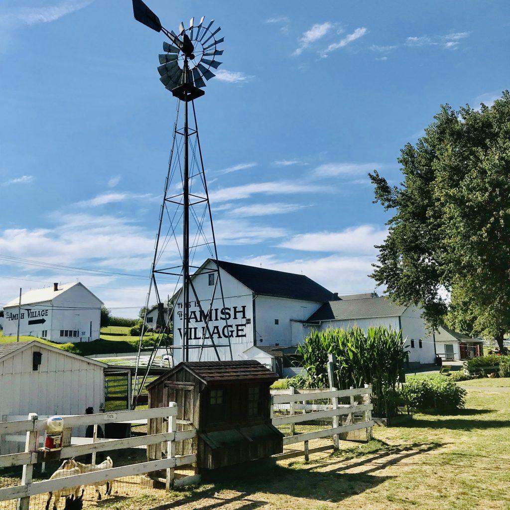 Ver Amish en Lancaster