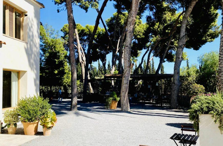 Restaurante Pópuli Bistró en Alicante, gran comida al aire libre