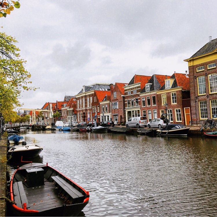 Alkmaar que visitar en Holanda
