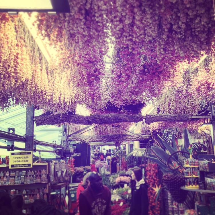 Mercado de las flores Amsterdam que hacer en Holanda
